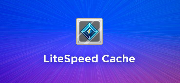 Web cache là gì và tác dụng của nó lên website